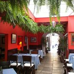 Nuestro Patio/ Our Patio
