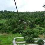 Eagle Track Zipline Tour