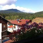 Balcony view of the Arber mountain