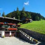 Alpbach***Bergwald***Bed & Breakfast / August 2012