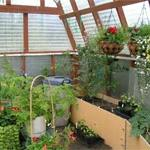  Alaskan Greenhouse