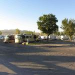 Tons of RVs