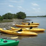 Kayak Lake Worth - Private Tours