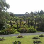 Logan botanic gardens nearby