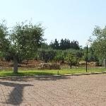 Photo of Agriturismo Chiancudd