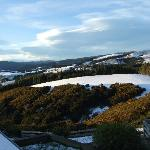 Our grounds in winter