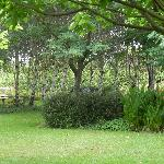 The gardens at Tree Elle