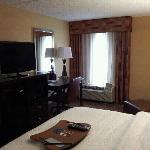 Hampton Inn Mobile I-10/Bellingrath Gardens照片