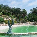  veduta della piscina con giardino botanico