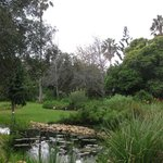 Botanical Garden University of Stellenbosch