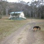 Goomburra Forest Retreat resmi
