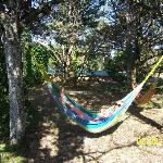 Chilling in one of the hammocks at La Roane