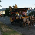Horse-drawn carriage ride that stopped by the hotel and took us around downtown Red Lodge