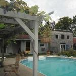 grape arbor and B&B
