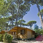 Bosco Verde Camping