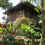 Desa Sanctuary, The Village Foto