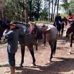 trail guide with horse I rode