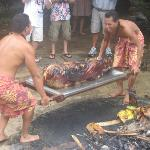 the star of the Luau, the late Mr Pig