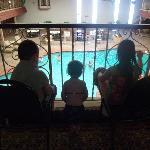 The kiddos looking at the pool....