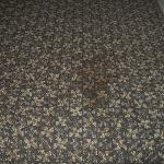 Carpet in hallway, More than one stain.