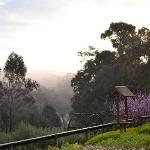  Early morning mists at Tweed Valley Lodge, Bridgetown WA