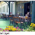 Hotel Liget