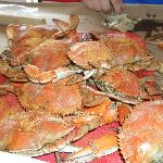  A dozen small crabs