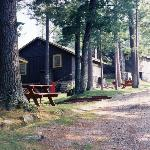  A few of the cabins