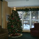 Christmas in the Spruce View