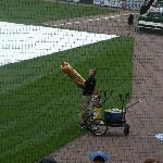 Hatfield Hot Dog Cannon - better have your gloves ready!