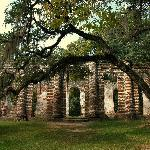 Foto de Old Sheldon Church Ruins