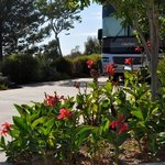 Escondido RV Resort照片