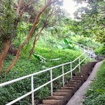 Wan Chai Green Trail