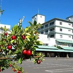 Hotel Apple Land