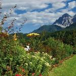 Photo de Hotel Leitlhof - Dolomiten Living