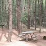 Fort Tuthill Coconino County Park Campgrounds