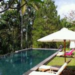 Foto de Suara Air Luxury Villa Ubud