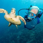 Jean-Michel Cousteau Ambassadors of the Environment