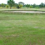 Amazon Golf Course