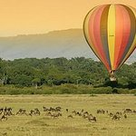 Safe Ride Tours & Safaris