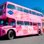 Big Pink Sightseeing - Hop On Hop Off