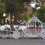 The Enchanted Carriage Company