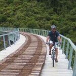 Kiwi Mountain Bikes - Day Tours