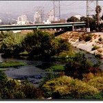 Los Angeles River Bike Path