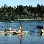 Robinson Park at Port of Alsea