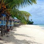 Oceania Travel and Tours Savaii Day Tours