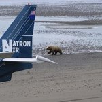 Natron Air