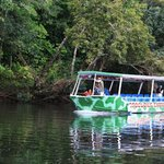 Crocodile Express - Daintree River Nature Cruises