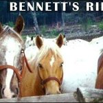 Bennett's Riding Stables