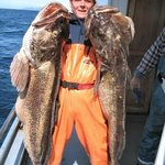 Alaska Coastal Marine Private Tours